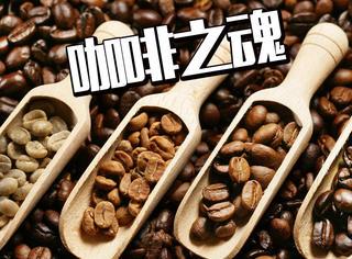 肯德基最常出现的咖啡豆!原来隐藏着这么大的秘密