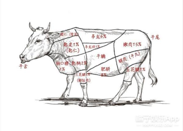 知乎上的高赞热地,为了吃我愿意跑遍全中国