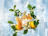 法国娇兰花草水语淡香水系列 玩味自然 吟游芬芳