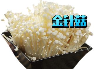 你喜欢吃金针菇吗?食用金针菇的好处
