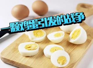 营养又有趣,吃鸡蛋的101种新姿势