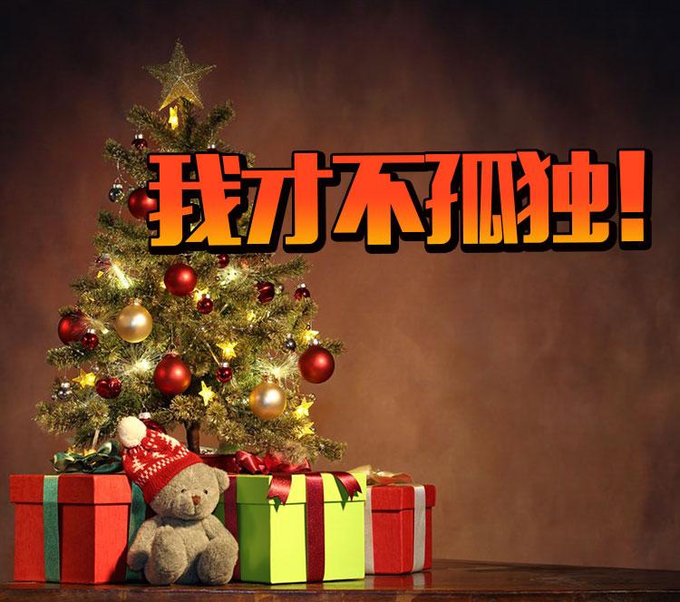 圣诞节没人陪孤独的像条狗?别想了,这才不是他们!