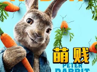 会武功还能改装电网,这只《比得兔》打起架来萌贱萌贱的!
