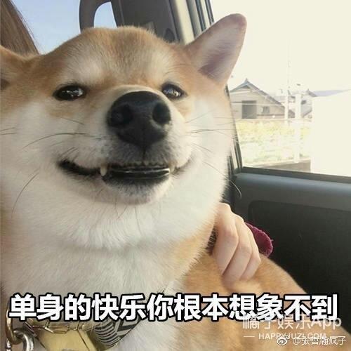 张艺兴九宫格、王源直播、王一博晒车…这届爱豆很会玩啊!