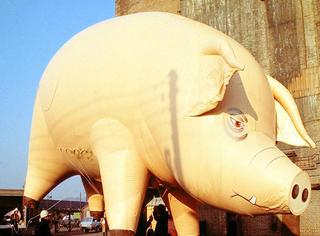 """原来在摇滚圈,有一只这么出名的""""猪"""""""