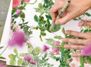 茱莉蔻2020玫瑰衡肤花卉水沁润限量版 夏日盛装登场
