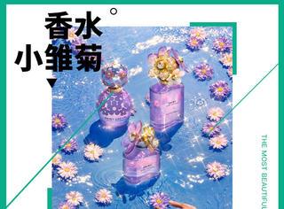 紫色的小雏菊香水这是神秘又可爱