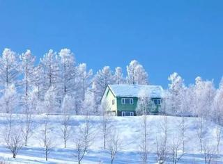 北海道的雪,满足了我对冬天的所有幻想!