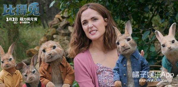 《比得兔》测评:帕丁顿熊的成功,比得兔绝对复制不来