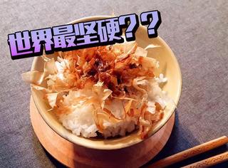 猫粮也能吃?配上米饭真的暖到想哭!