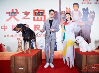 《犬之岛》首映狗狗嗨翻全场,宋佳秀狗语朱亚文为其翻译!