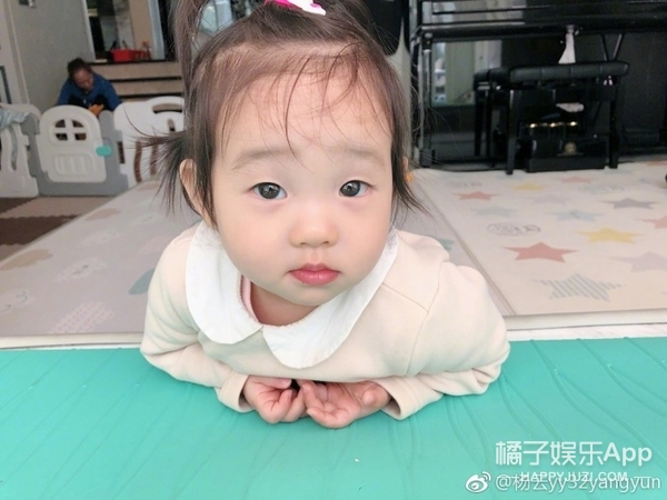 杨云晒双胞胎女儿靓照,你的超级妹控杨阳洋已上线!