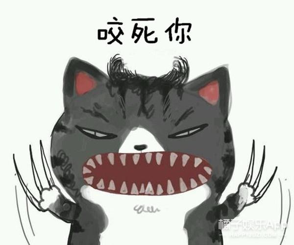 控诉人类 | 喵界一哥发声:我要起诉人类发明了猫钻!