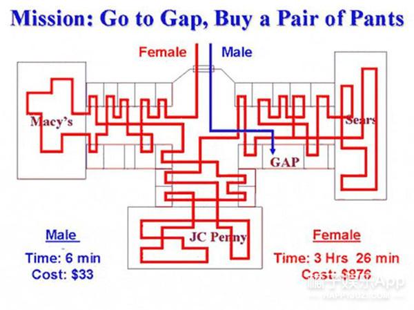 11张图告诉你男女脑袋里装的东西到底有啥区别!