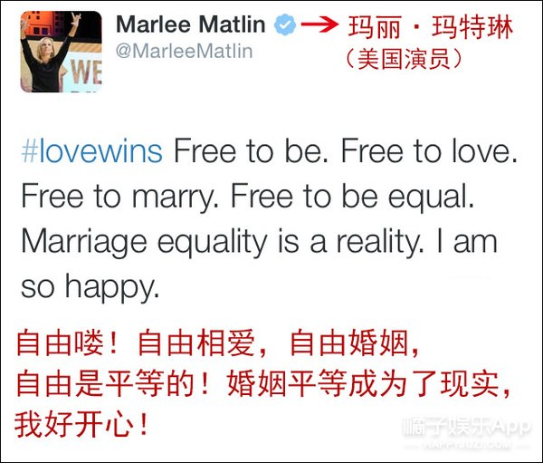 """全美同志婚姻合法化 他们哭成了一团 因为""""爱""""赢了"""