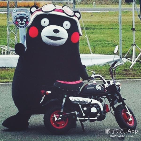 听说99%的人都被这只画了腮红的熊蠢哭了