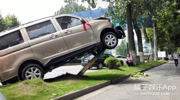 新车上路 请多关照
