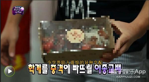 带有京味儿的韩国少年 火遍韩国的小众乐队Hyukoh