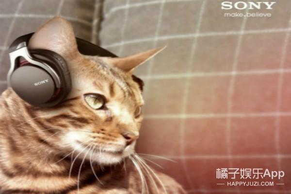索尼不仅出耳机还发明了一款黏性挖耳勺!