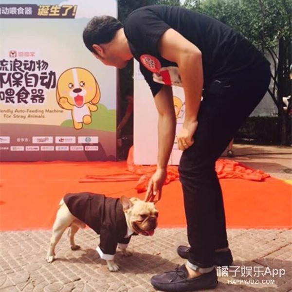 超有爱 | 范冰冰的狗代言了一个扔水瓶出狗粮的环保喂食器
