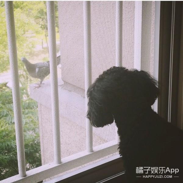少女时代泰妍:在家一个人也可以玩儿很嗨