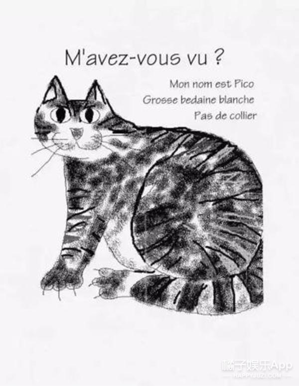 因为对走失小猫小狗深深的思念 才有了这些有爱的寻宠手绘