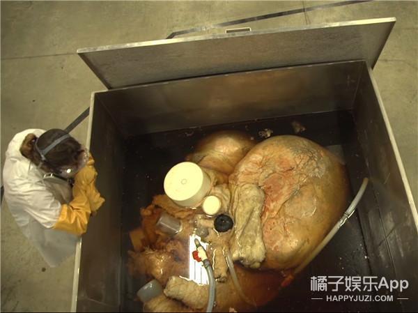 快来看!这就是世界上最大的心脏!