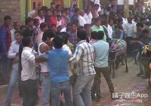 印度男子躺马路上被牛踩,说被踩到后有好运…