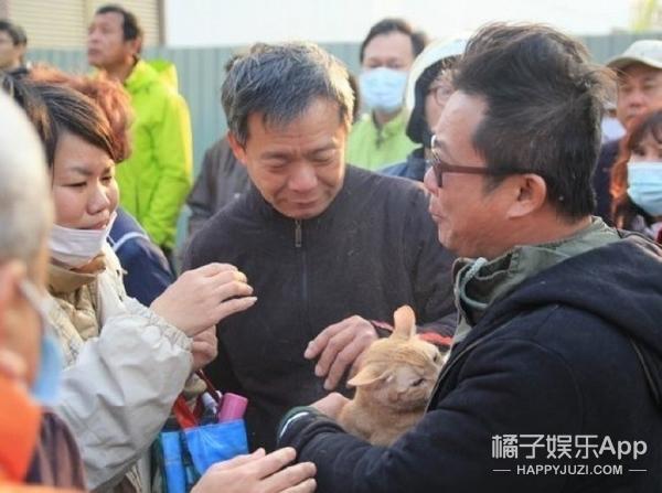 台湾地震:这只猫救了自己的小主人