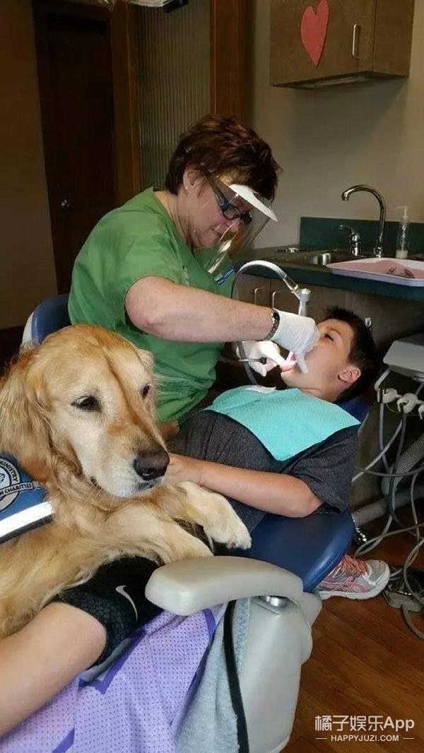 【萌宠】这家儿童口腔医院有一只又萌又出色的助手!