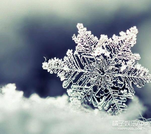 【真相帝】下雪天是世界最安静的时候