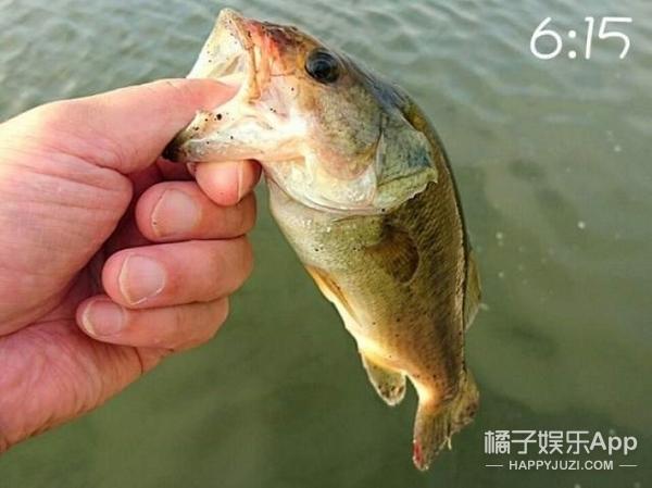下次不要抬下巴撩妹了,日本网友说这是钓鱼动作