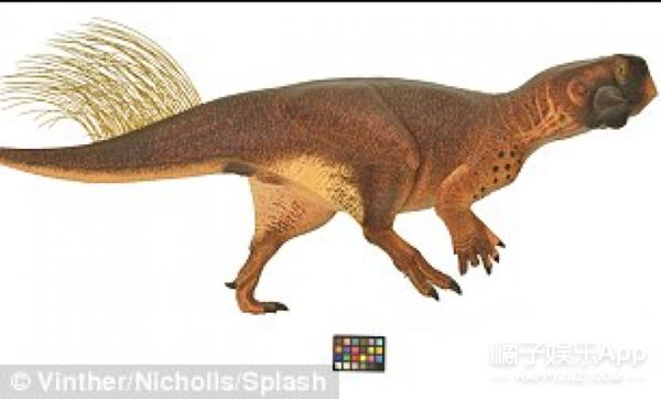 外国科学家发现了一种会变色的恐龙,直呼想当宠物养