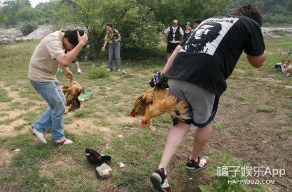 """日本高薪招聘""""抓鸡员"""",只在深夜工作"""