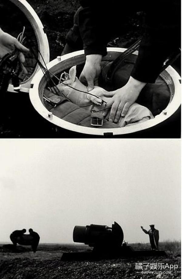 天宫二号发射之后,我们研究了下如何送一只青蛙上太空