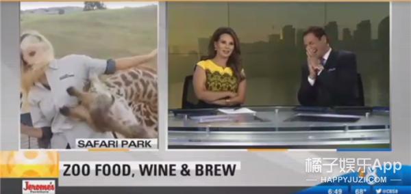 美国女记者直播中遭长颈鹿袭胸,这画面太污!