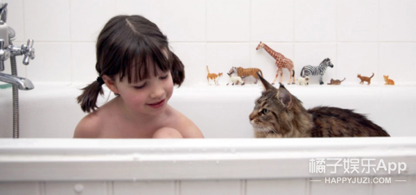 一只猫帮助7岁女孩逐渐走出孤独症