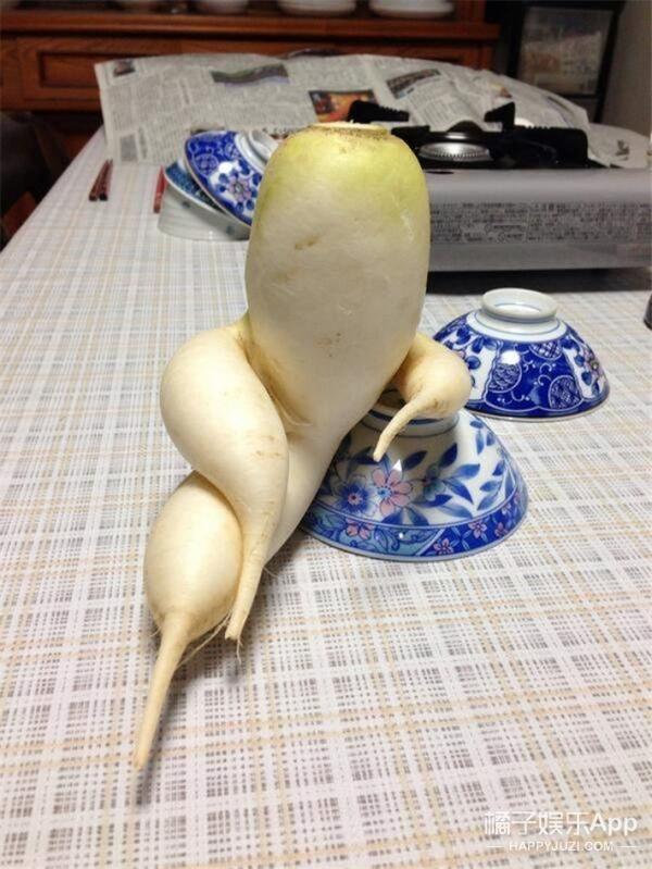 日本网友晒长相奇怪的蔬菜,实在太销魂了