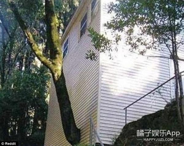 世界上最糟糕的建筑,这些设计师脑子是不是进水了?