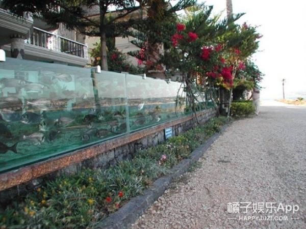 富豪打造最牛别墅围墙:与爱琴海相连的水族箱