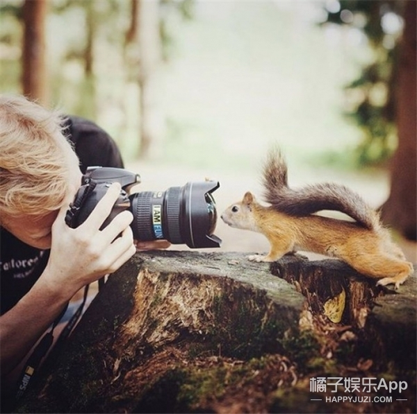 为了拍下这些萌萌哒野生动物,这个芬兰小哥也是拼了