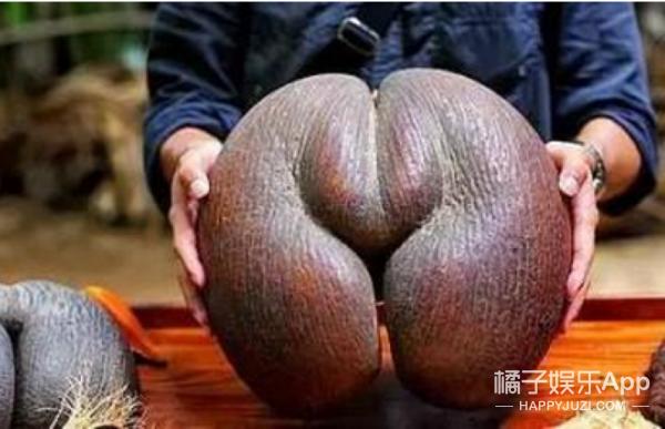 当水果长成这样,你还敢吃么!