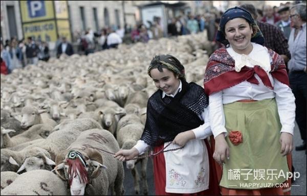 马德里被2000只羊占领,700多年前这就是它们的地盘!