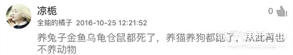 【娱乐早报】网曝杨洋李沁低调约饭  Gary告别跑男投身音乐