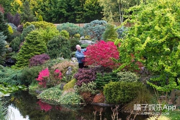 英国爸爸花费25年,打造浪漫秘密花园