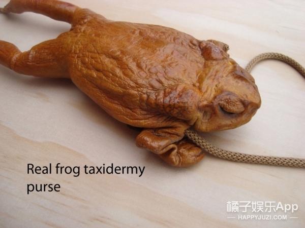 卫生巾拖鞋、青蛙做的钱包,有个网站专卖奇怪的东西