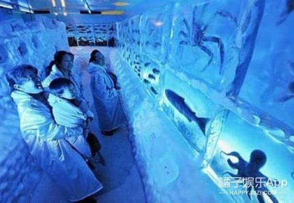 这是个有味道的溜冰场,冰下全是海鲜