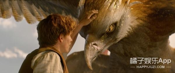 妈呀!原来《神奇动物》里嗅嗅、毒角兽那些萌物都是骷髅变的