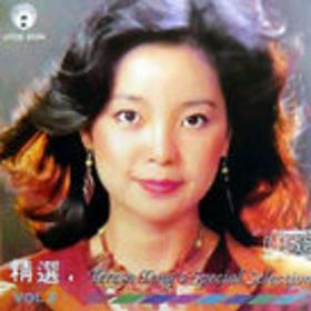 邓丽君特别精选 Vol.2