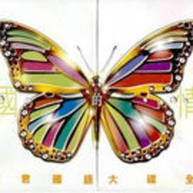 天国的情人(20CD)